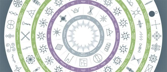 homoopathische symbolapotheke 101 schwingungsmittel fur den soforteinsatz mit beiliegendem a2 plakat